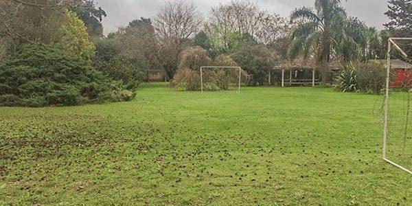 f90d_web_images_internacion_0008_moreno_cancha de futbol